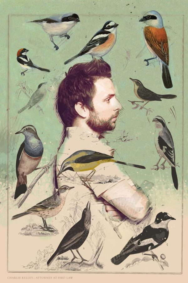 Charlie Bird Law canvas